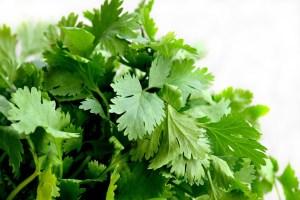 healthy-diet-foods-coriander