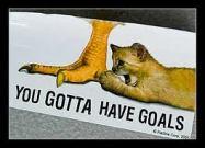you gotta have goals