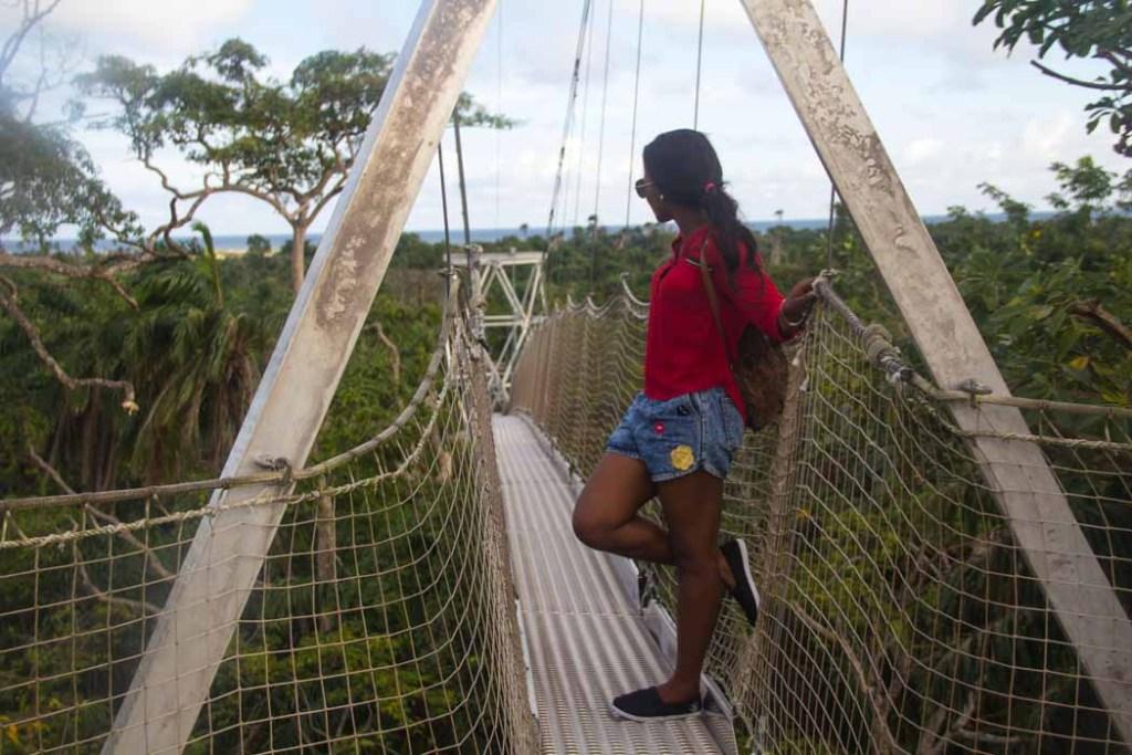 the longest canopy walk in africa