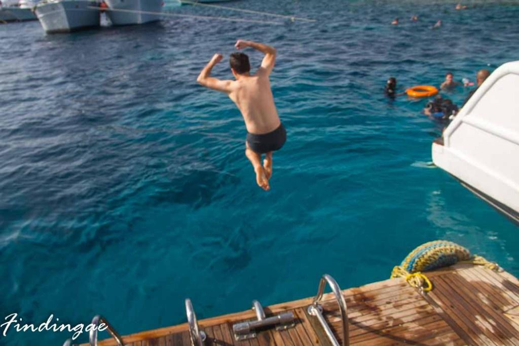 Snorkeling on Tiran Island