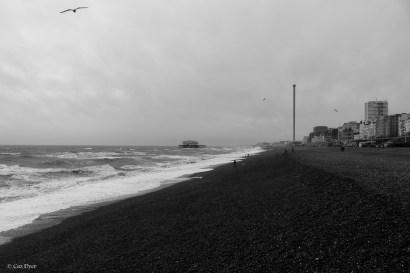 Brighton 7