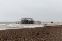 Brighton 8