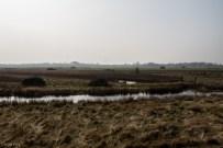 Oare Marshes-10