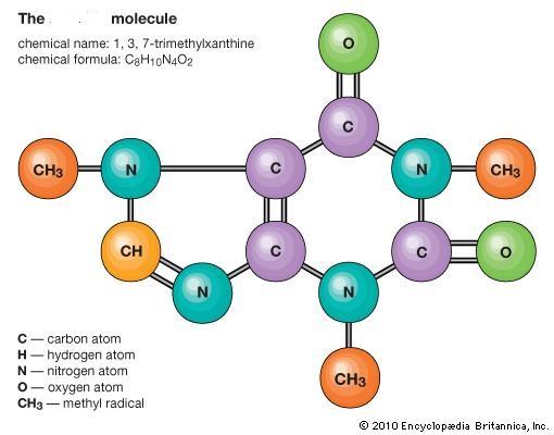 caffeinemolecule2