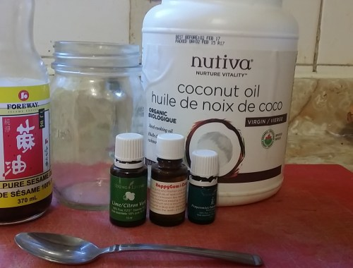 my ayurveda routine - finding health & wellness