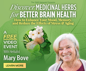 Boost your brain health for better memory, mood & focus