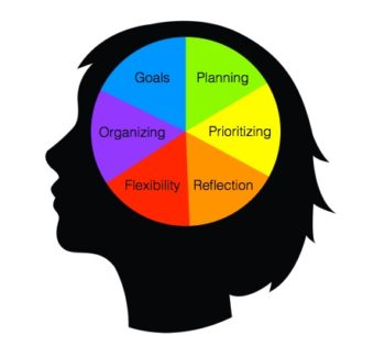 What is Executive Function?