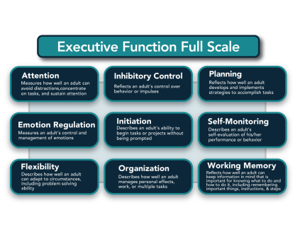 Executive function flowchart