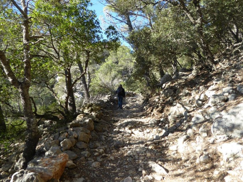 Mallorca Wanderung Valldemossa kleine Runde