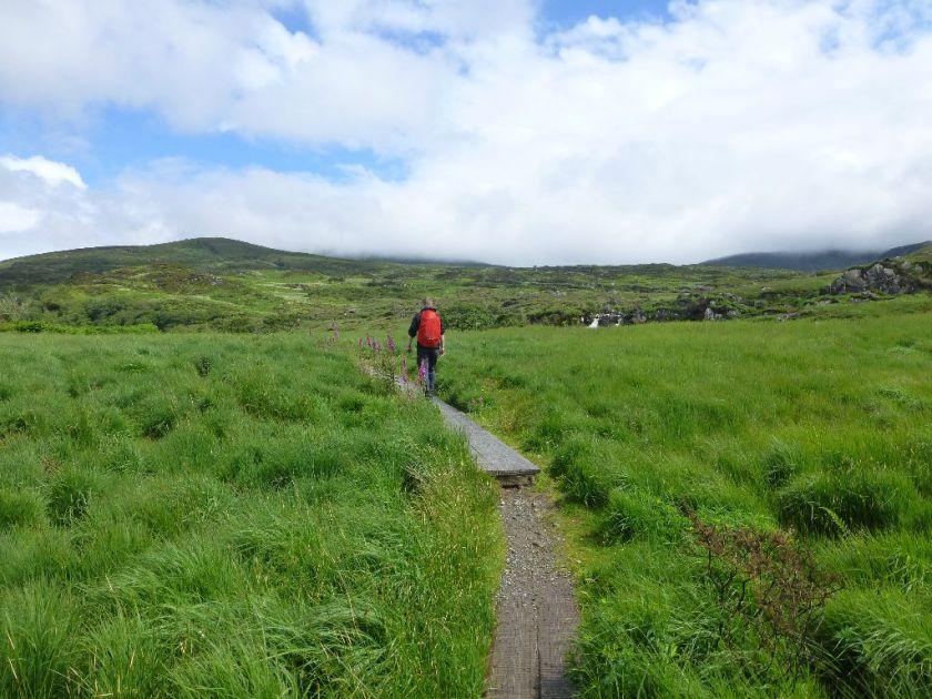 Wanderung Killarney Old Kenmare Road