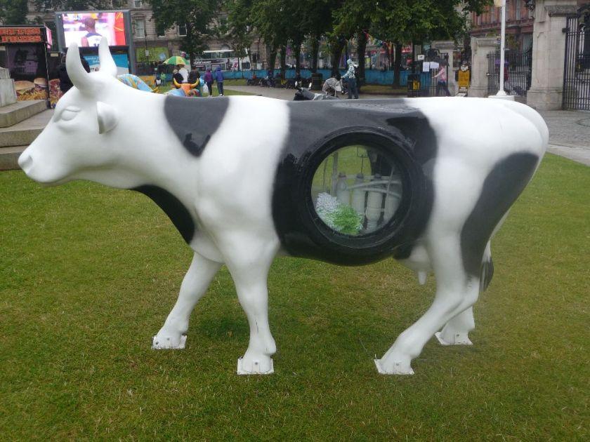 Irland Milch