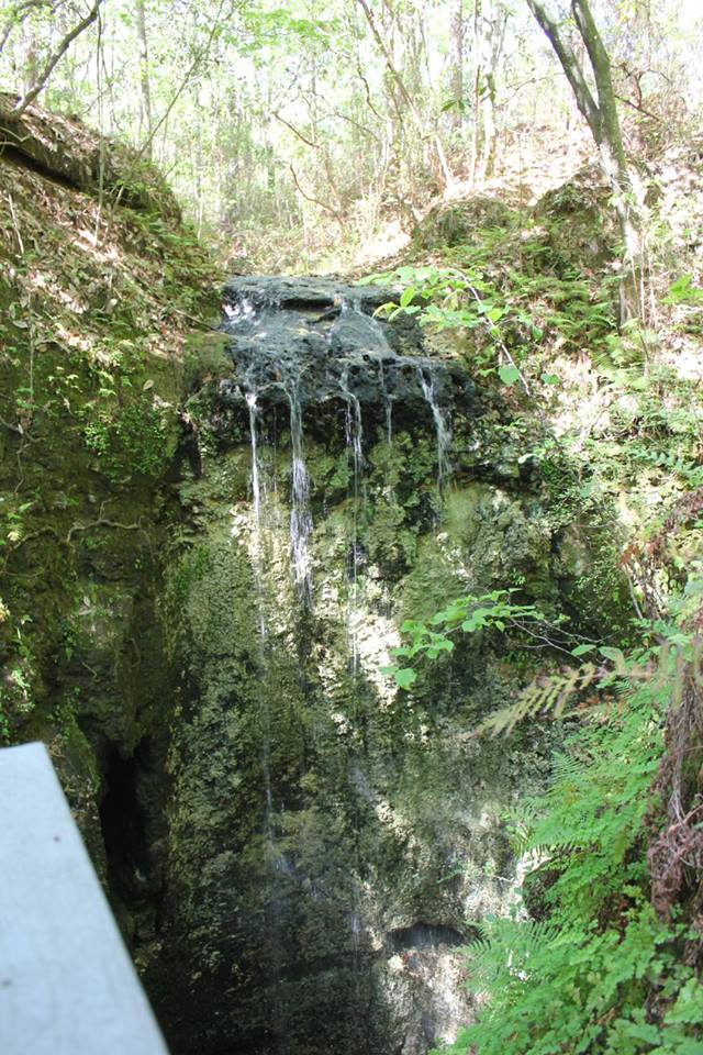 Florida's highest waterfall located in Northwest Florida