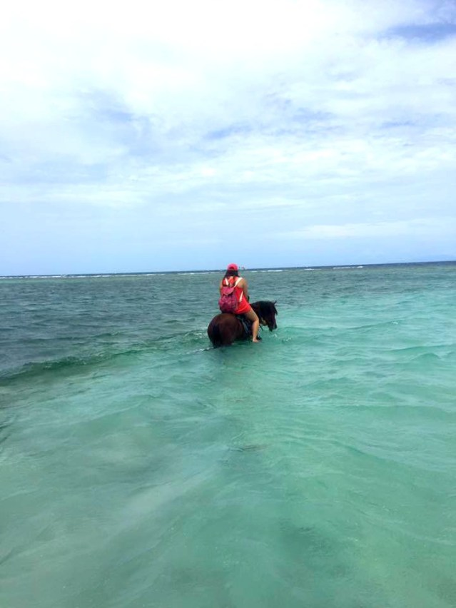 things to do in Roatan horseback riding on the beach