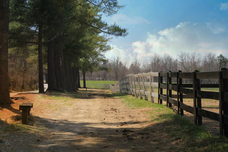 pretty view at Shenandoah Crossing in Gordonsville, VA