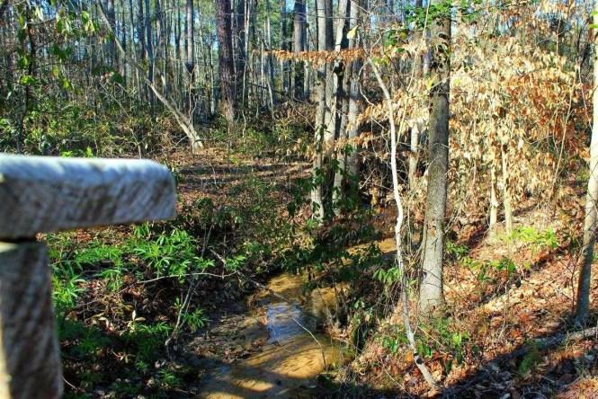 Clark Park Nature Trails in Fayetteville, North Carolina