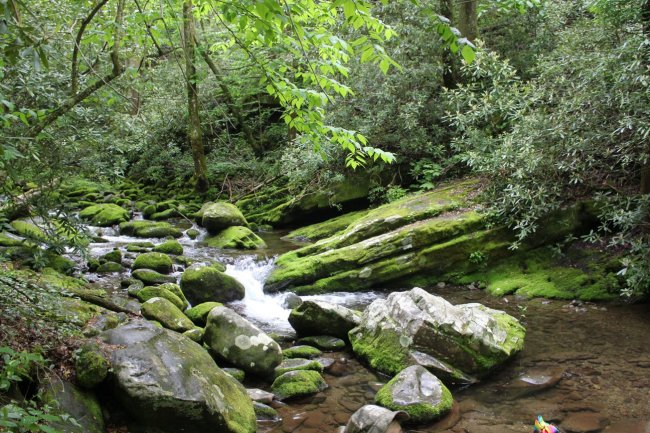 creek in the mountains in Pigeon Forge