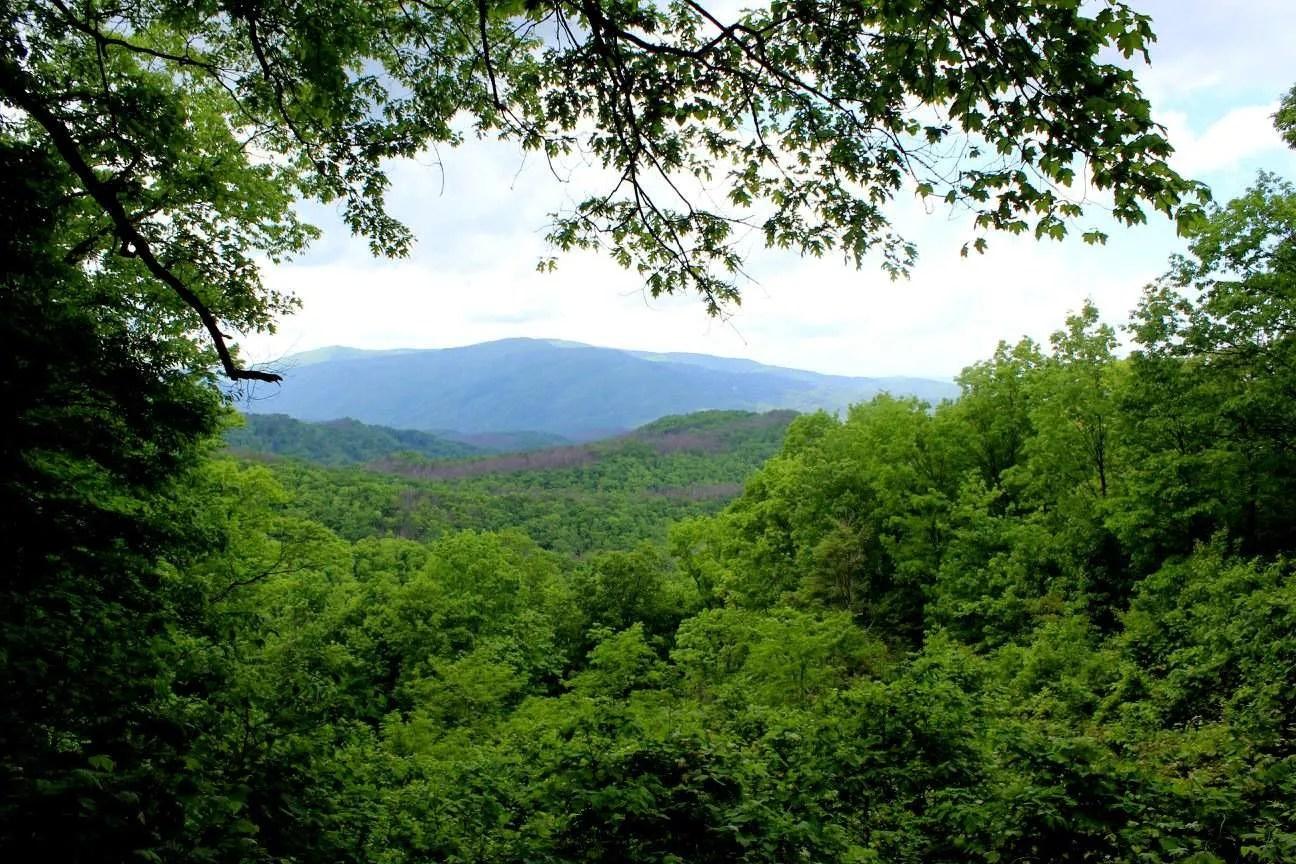 State parks near Fort Bragg