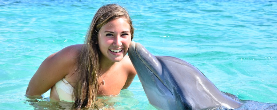 Things I Had Done in Roatan: Swim with Dolphins