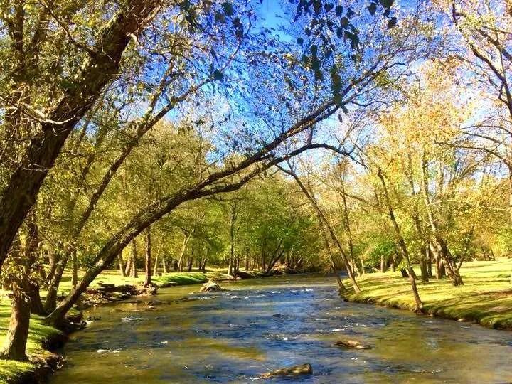 The Swannanoa River runs through the Asheville KOA East campground.