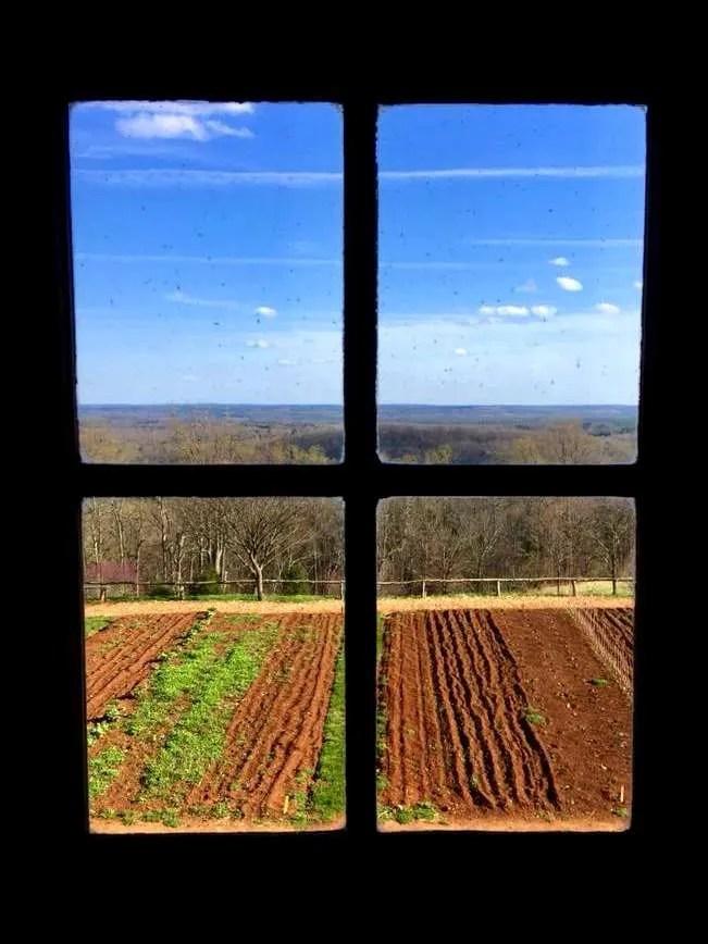 The vegetable garden at Monticello.
