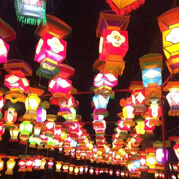 Entry walkway at the North Carolina Chinese Lantern Festival.