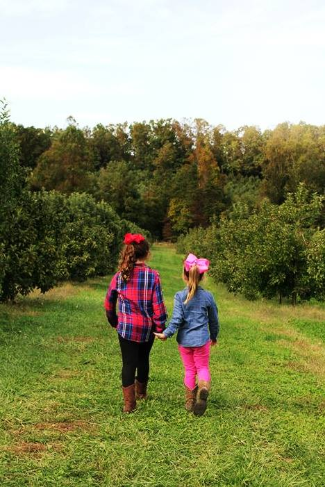 Girls walking through apple orchard in Asheville, North Carolina.