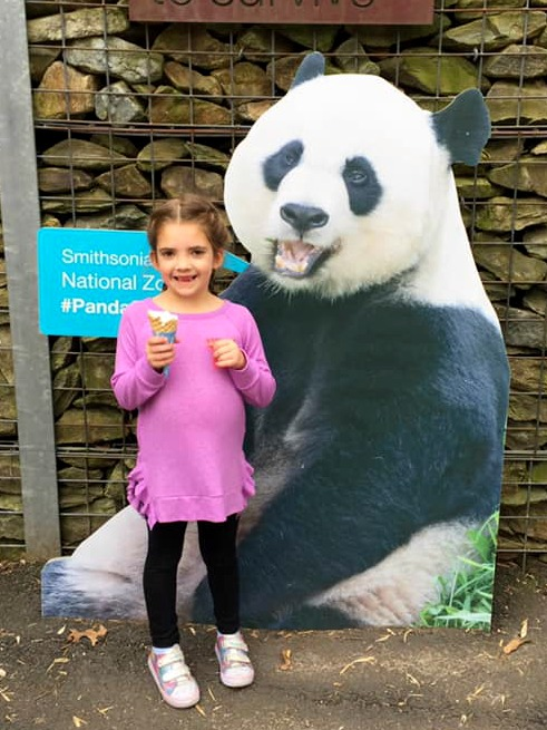 My kids were too excited to see the panda bears at the zoo in Washington D.C.