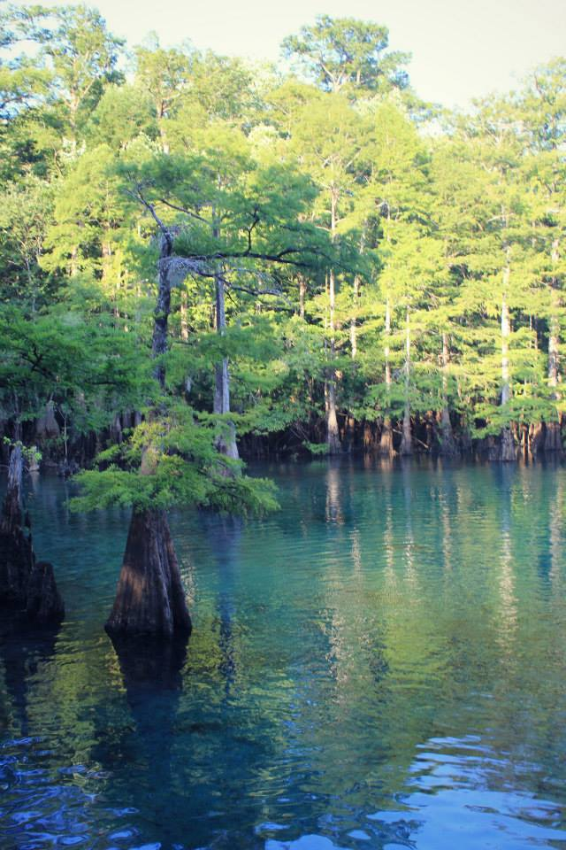 Morrison Spring in Northwest Florida