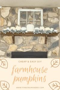 Cheap and Easy DIY Farmhouse Pumpkins   Finding Mandee