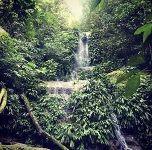 Waterfall at Pico Bonito National Park in Honduras.