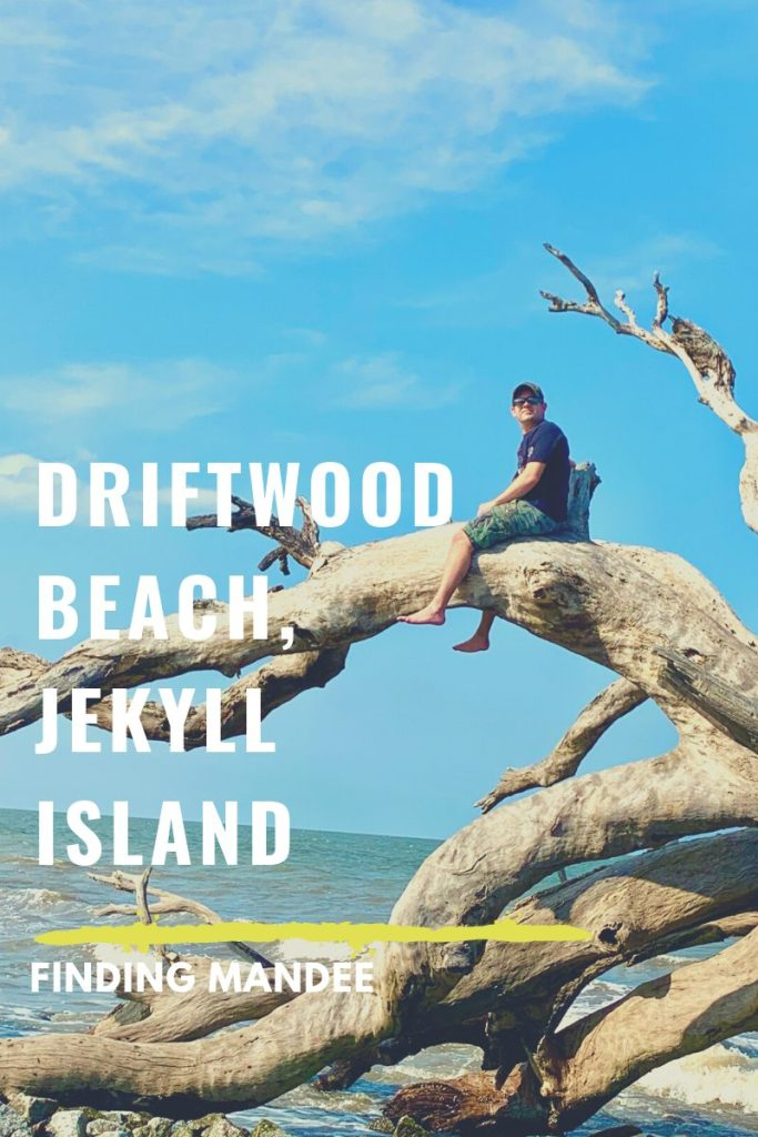 Driftwood Beach is One of the Most Unique Beaches We've Ever Seen | Finding Mandee
