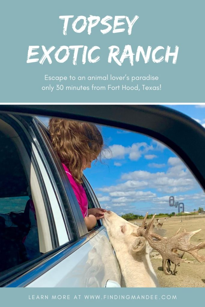 Escape to an animal lover's paradise only 30 minutes from Fort Hood! | Finding Mandee