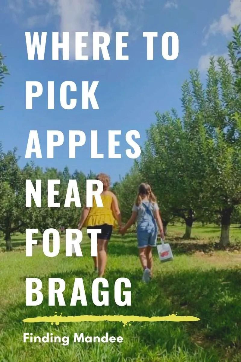 Where to Pick Apples Near Fort Bragg, North Carolina | Finding Mandee