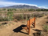 Bench overlooking the Rio Grande w/Sandia Mountains in background