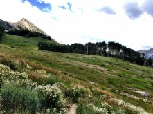 Ski slope and Crested Butte Mountain.