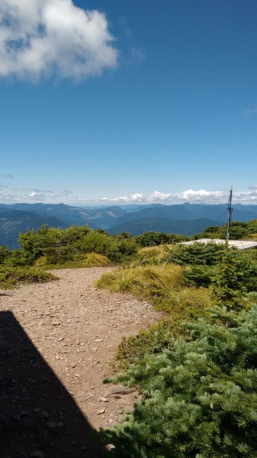 coffin mt trail_july 2016 (66)