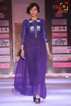 Manipur Fashion Extravaganza 2014 (6)