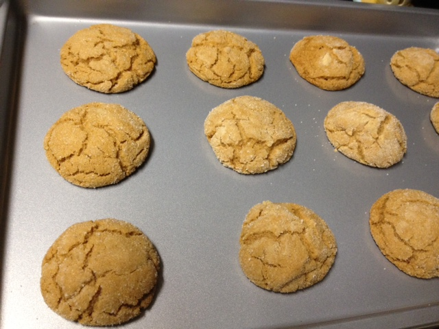 soft molasses cookies straight out of the oven