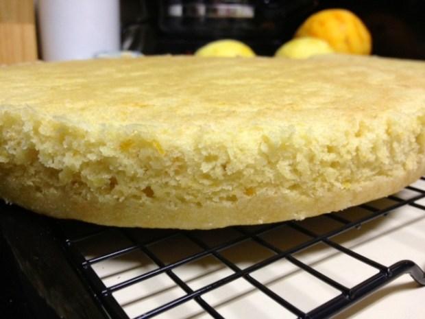 citrus marmalade cake baked cooling closeup