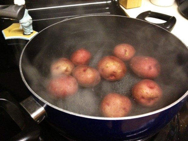 crash hot potatoes boiling