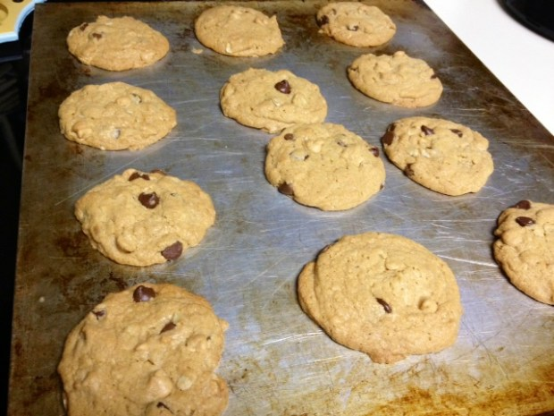 peanut butter oatmeal choc chip cookies baked