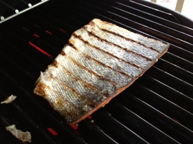 maple citrus salmon grilling marks