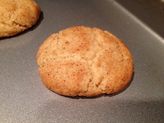 Brown Butter Snickerdoodle finished
