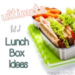 Ultimate List of Lunch Box Ideas