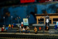 2014 TrainShow (5)