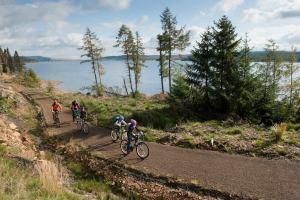 Cycling - Kielder Lodges Holiday Park