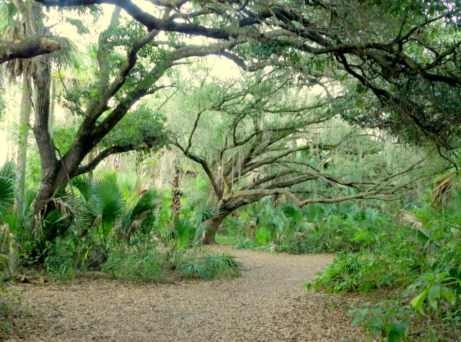 Oak Hammock Park In Port St Lucie
