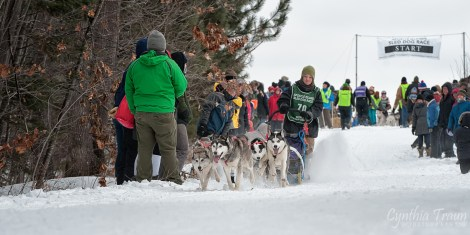 Apostle Islands Dog Sled Races 2015-7531-3