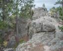 Black Hills SD-3831