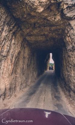 Black Hills SD3853